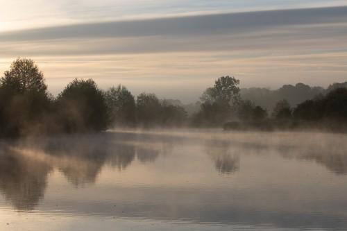 Brume-matinale-sur-le-marais99389c4f1f16e6d5.jpg